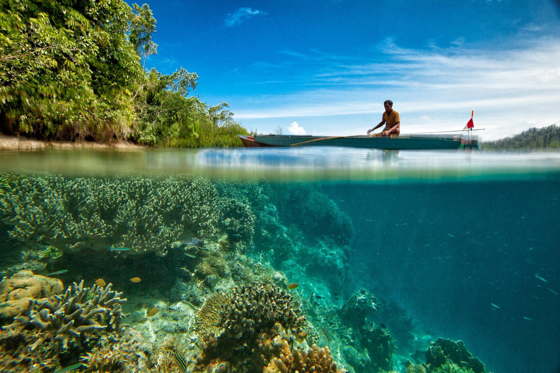 motive pentru a vizita Indonezia